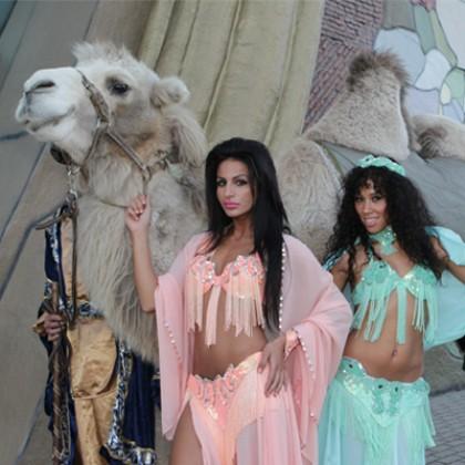 1001 mysteries kamelen.jpg